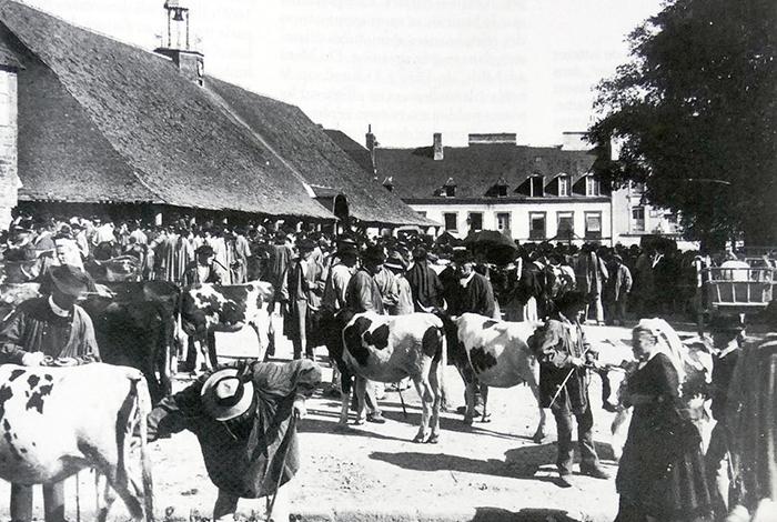 Marché aux vaches place des halles - Photographie de Fernand CADORET (1855-1918)