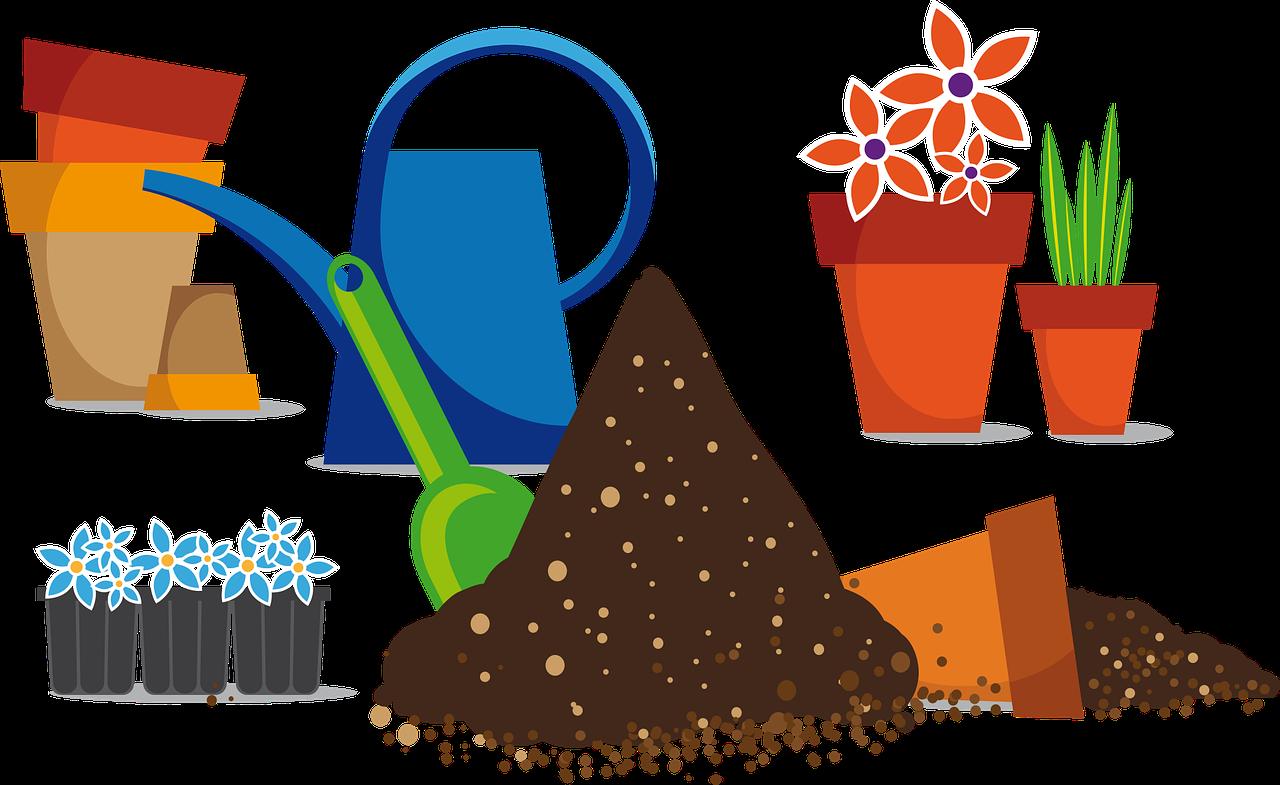 Plantations et voisinage - Élagage