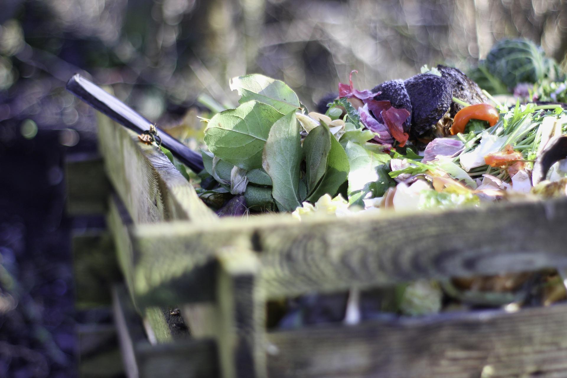 Les formations « compostage-jardinage zéro déchet »